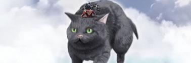 Revelation flying cat mount